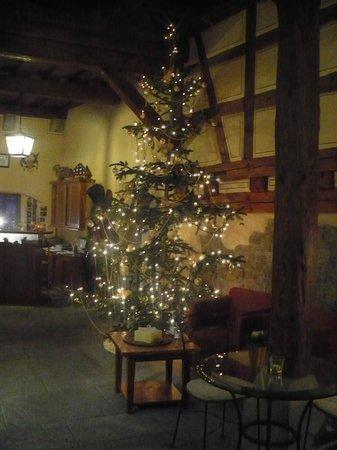Hotel Klosterstüble: reception/breakfast area