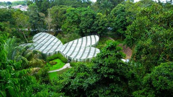 Calarcá, Colombia: Mariposario desde la torre