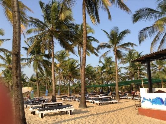 C. Roque Resort: bigger part of beach beds