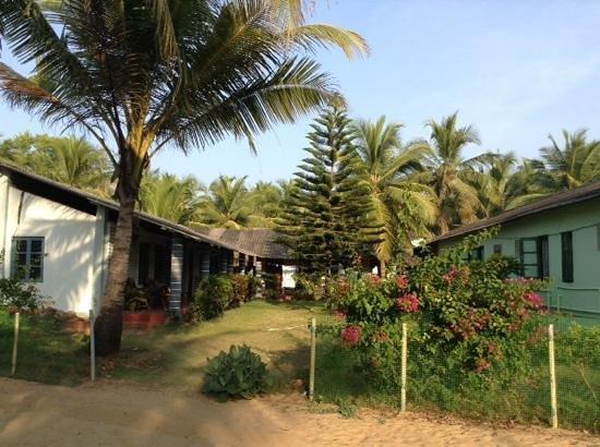 C. Roque Resort: territory near a/c rooms