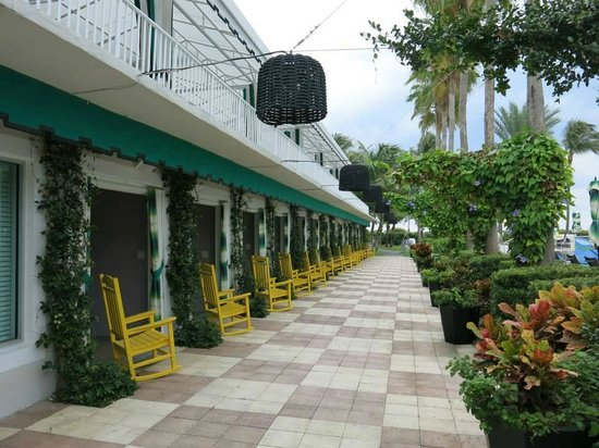 Kimpton Surfcomber Hotel: BANGALÔS SEMI PRIVATIVOS PARA DESCANSAR