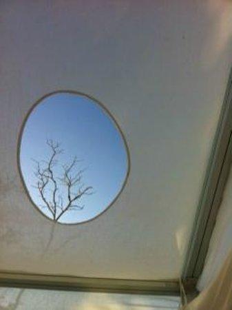 Hotel Encanto : vista al cielo desde el camastro