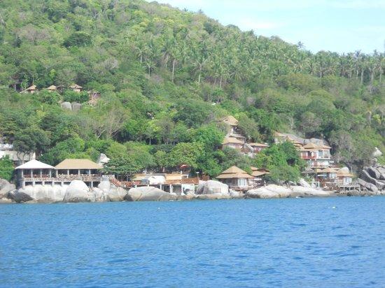 Dusit Buncha Resort : resort