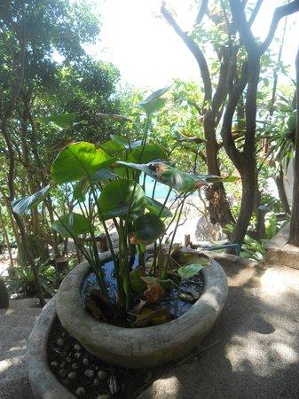 Dusit Buncha Resort : giardino