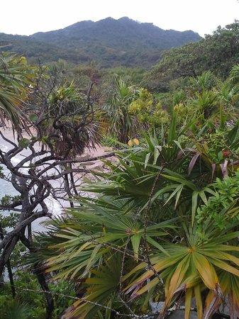 Paya Bay Resort : View of Picacho from Paya Bay