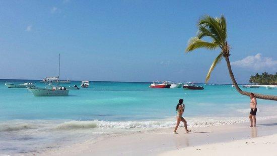 Concept Tours Punta Cana -  Private Day Tours: Saona Elite