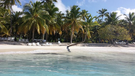 Concept Tours Punta Cana -  Private Day Tours: Plage de Saona