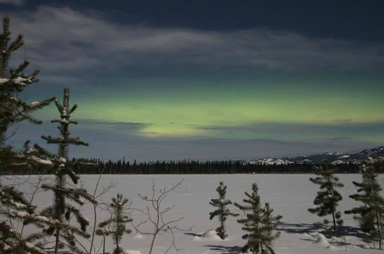 Sundog Retreat : Northern lights from the viewing huts