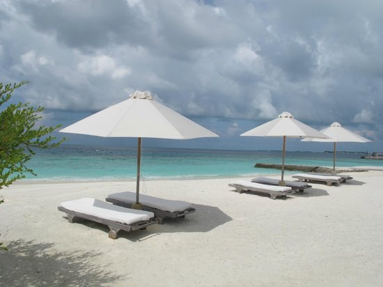 Cocoa Island by COMO: Lounge beds by the beach