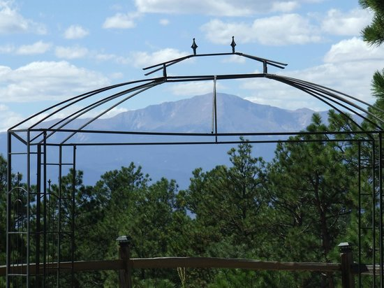 Black Forest Bed and Breakfast: Our Wedding Gazebo