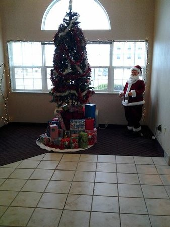 Microtel Inn & Suites by Wyndham Urbandale/Des Moines: pretty tree in the lobby