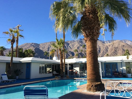 Palm Springs Rendezvous : Courtyard/Pool Area