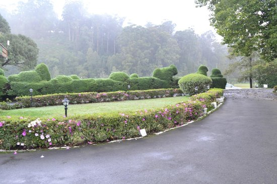 Landscaping picture of wellington gymkhana club golf for Landscaping wellington