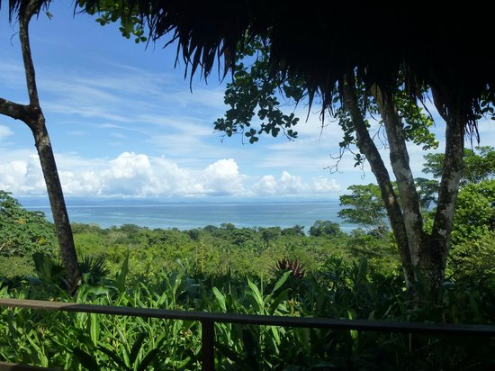 Lapa Rios Ecolodge Osa Peninsula: view from our bungalow