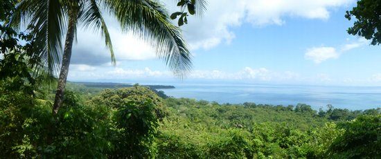 Lapa Rios Ecolodge Osa Peninsula : View from our main building.