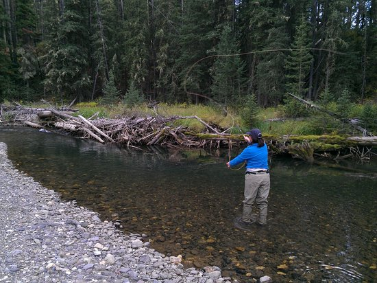 Flying Pig Adventure Company: Fly Fishing Soda Butte Creek
