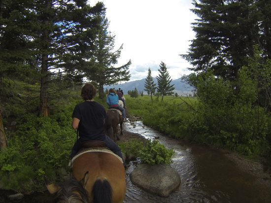 Flying Pig Adventure Company: Our popular two hour horse ride.