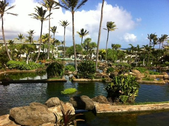 The Point at Poipu: Looking towards the pool
