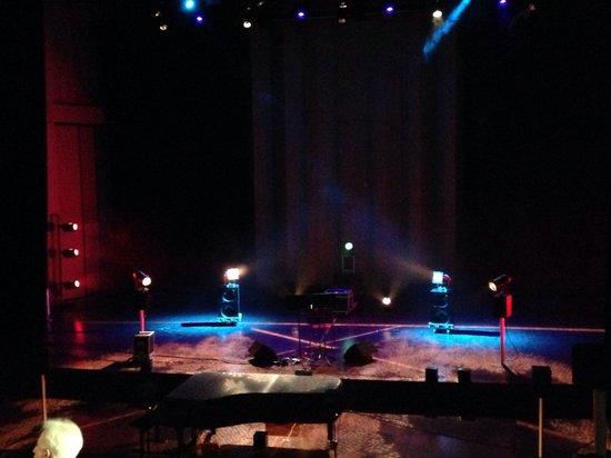 Conservatoire National a Rayonnement Regional: MANCA 2013