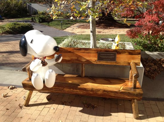 Snoopy's Home Ice : Hang with snoopy