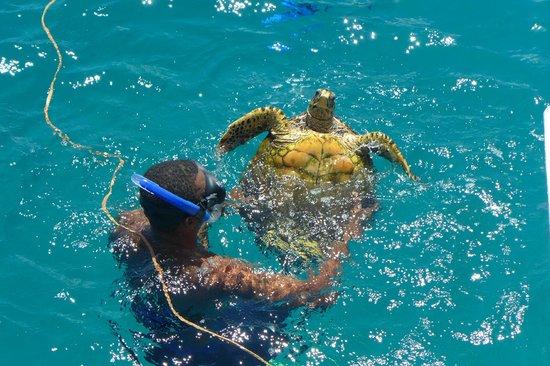 Beach Villa Seychelles: Ausflug
