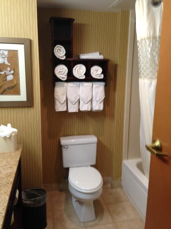 Hampton Inn Philadelphia Center City - Convention Center: Bathroom - plenty of towels for 2