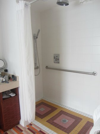 The Hotel of South Beach : Shower