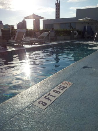The Hotel of South Beach: Lovely pool