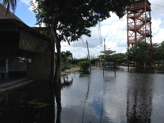 Ruinas de Coba: Flooded parking lot