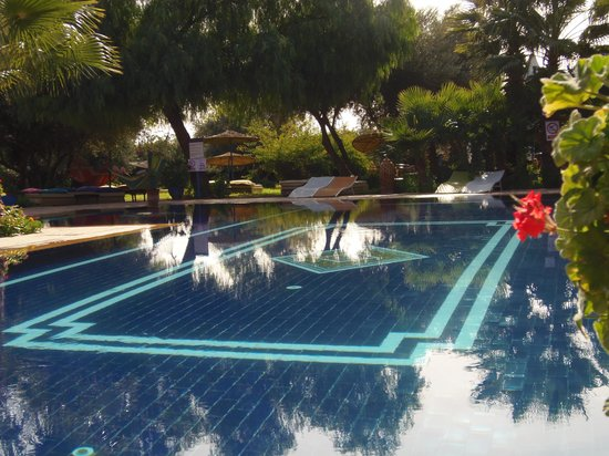 Le Relais de Marrakech : pool area
