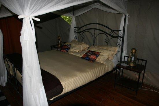 Tarangire River Camp: Comfy