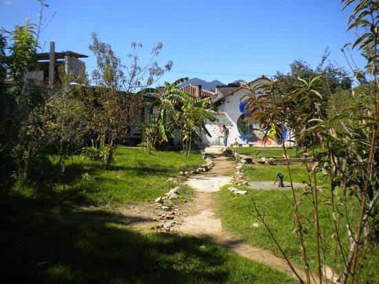 Casa Caracol Hostel : Amplio Jardin