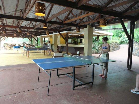 Raices Esturion Hotel: Ping pong y mesa de pool