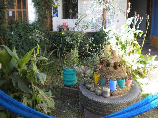 Casa Caracol Hostel : Jardin De Hierbas