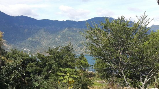 The Clover: Una vista fenomenal! En lo que uno come disfruta de un buen ambiente en contacto con la naturale