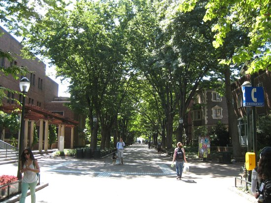University of Pennsylvania : Locust Walk