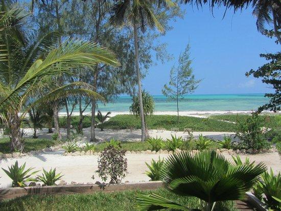 Domokuchu Beach Bungalows: Paradise!