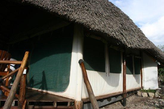 Manyara Wildlife Safari Camp: Tented lodge