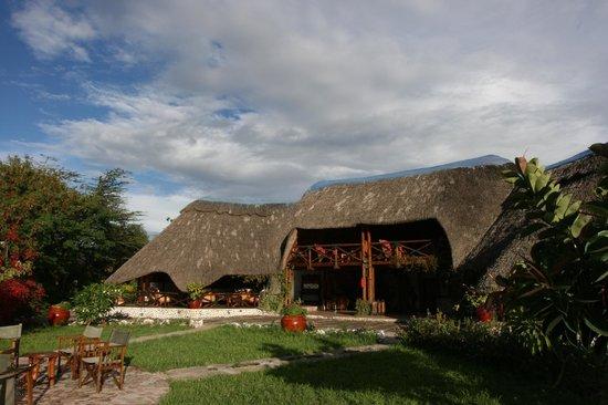 Manyara Wildlife Safari Camp: Main Area