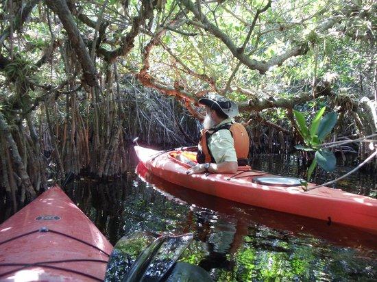 Everglades Rentals & Eco Adventures : No Paddles Needed