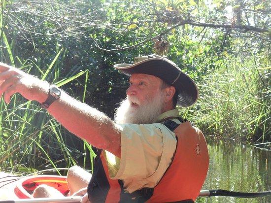 Everglades Rentals & Eco Adventures: Look...Over There!