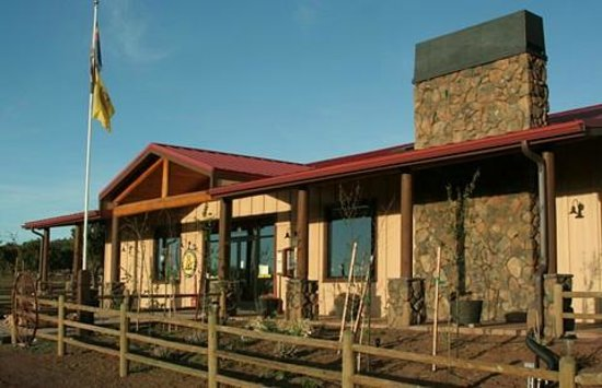 Grand Canyon / Williams KOA: Where Epic Road Trippers Check-in at the Grand Canyon KOA