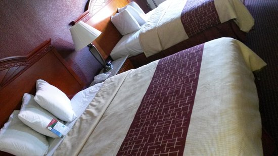 Red Roof Inn & Suites Pigeon Forge - Parkway : our beds