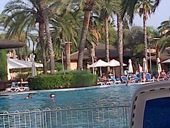 PortBlue Club Pollentia Resort & Spa : Pool