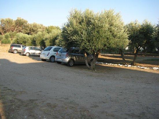 Aphrodite Hotel & Suites: Ample parking