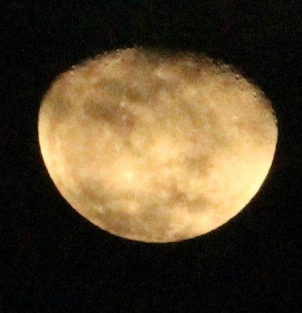 Komba Forever: moon