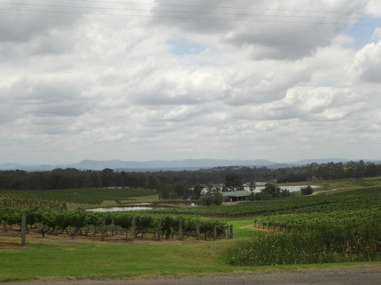 Audrey Wilkinson Vineyard: Perfect View from The Dairy