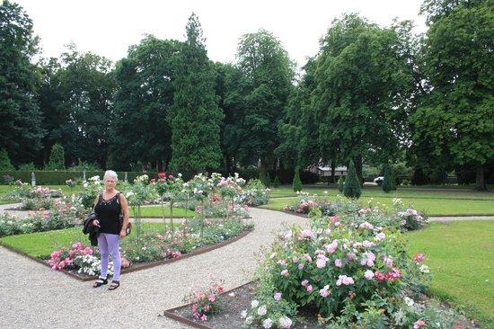 Kasteel de Haar: Goed onderhouden prachtige tuinen
