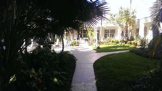 Grand Palm Plaza: Pathway to paradise