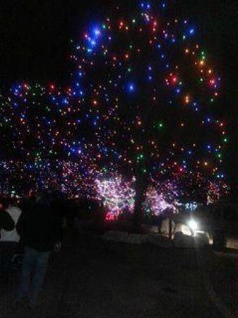 Denver Zoo Lights holiday attraction 2013